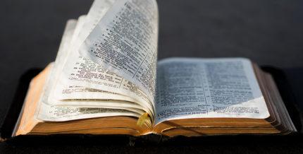 Traducerea Bibliei
